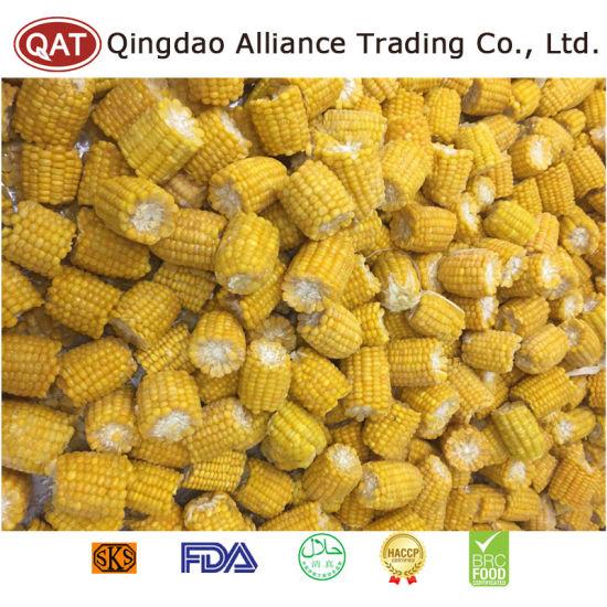 Export Standard Frozen Sweet Corn Cobs