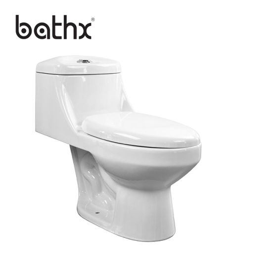 High Quality Indian Style Washdown Flushing Sanitary Ware One Piece Bathroom Ceramic Toilet (PL-3836)