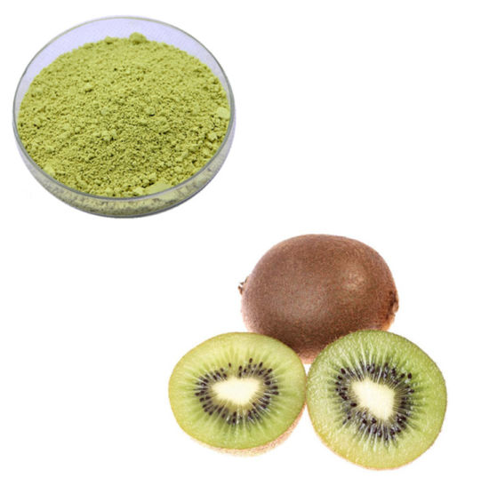 100% Organic Kiwi Fruit Freeze-Dried Extract Powder