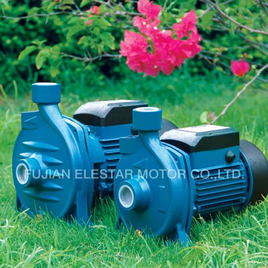 Cast Iron TPS Self-Priming Suction Electric Water Pump pictures & photos