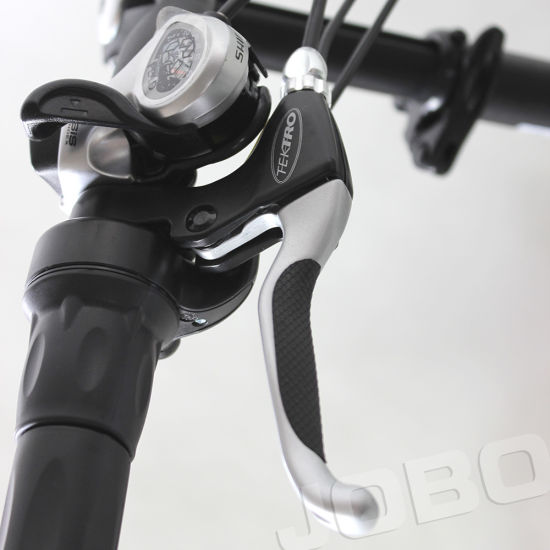 Jobo 20 Inch Folding Bike Moped Mini Bicycle (JB-TDN12Z) pictures & photos