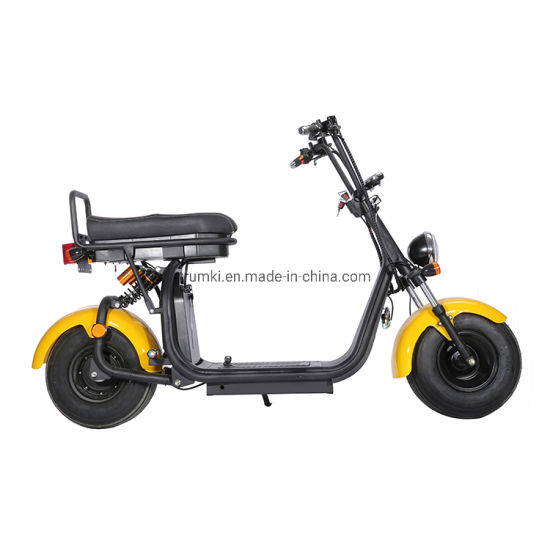 2019 Mountain Bike Electric Fat Bicycle Tire Citycoco Electric Scooter 1000W