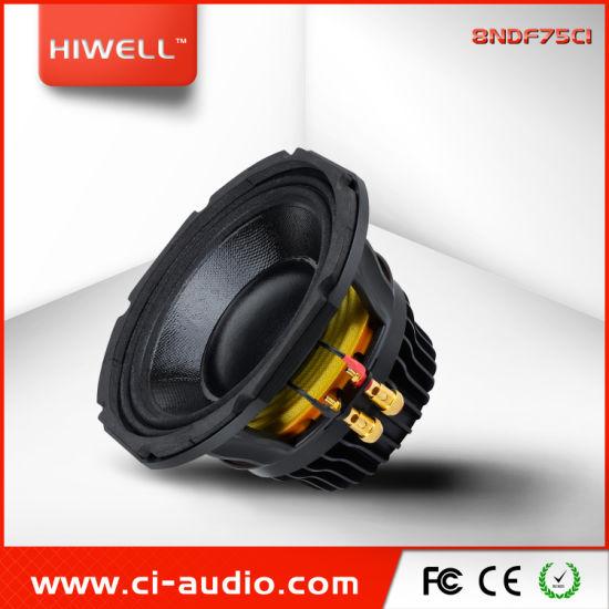 Professional DJ Speaker 8 Inch Neodymium 800watt Line Array Sound System