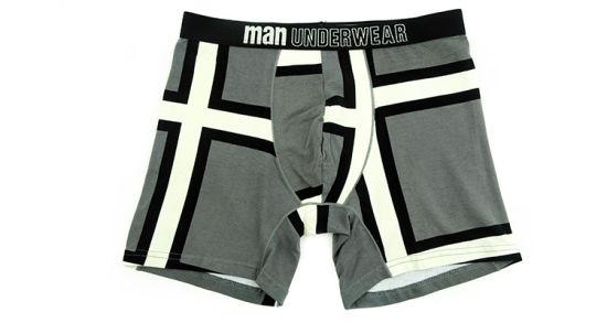 95%Cotton/5%Pendex Men Underwear Boxers Brief Fashion for 253-Grey