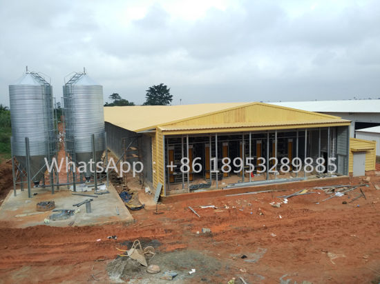 Factory for Light Steel Structure Poultry House