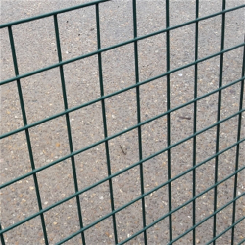 China Sale High Quality Best Price PVC Coated Welded Mesh pictures & photos