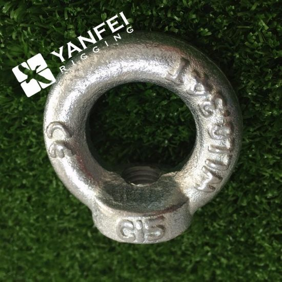 Zinc Plated DIN582 Eye Nut for Fastening pictures & photos