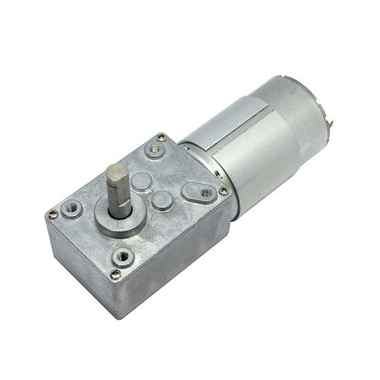 Elelctric Worm Gear Motor 12V/24V for Pump or Medical Machine