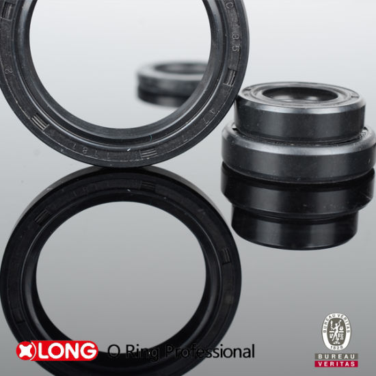 Dust / Oil Resistant High Quality Rubber Oil Seal pictures & photos