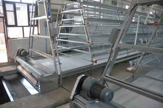 China Poultry Farm Hens Breeding Laying Cages Equipment System Price