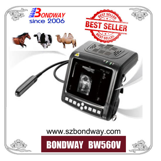 Mindray Ultrasound Machine Veterinary Ultrasound Scanner
