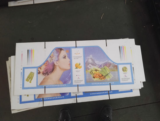 Multi Colors Water Ink Carton Printing Machine pictures & photos