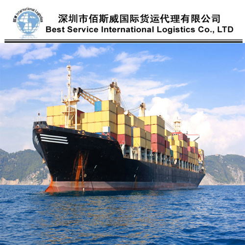 International Sea Shipping From Wuhan/Tianjin/Nanjing to Bejaia