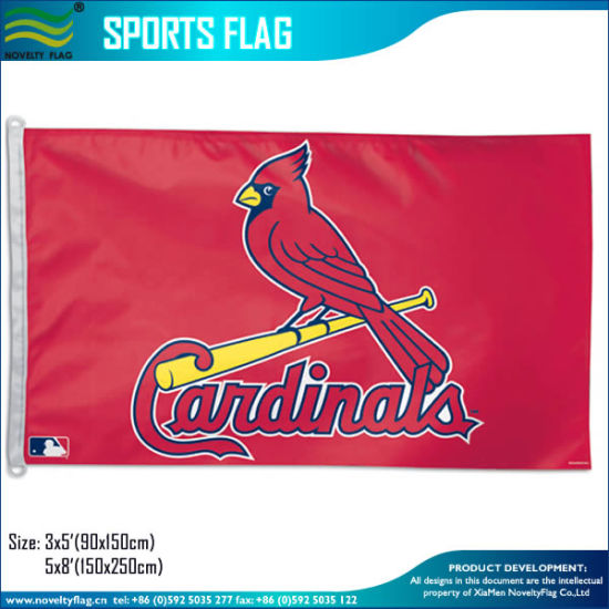 Fans Sports World National Country Banner Flags (T-NF01F09071) pictures & photos