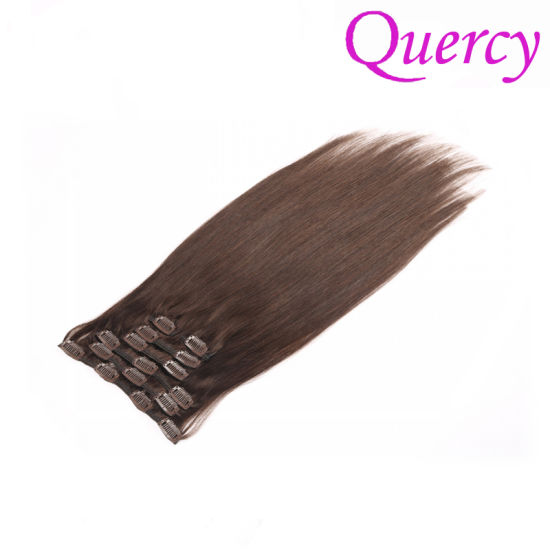 Cheap Clip in Hair Extensions, 100% Virgin Hair, Top Quality Clip Hair (CH-011) pictures & photos