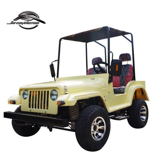 200cc 150cc Mini Jeep Willys/UTV/ATV Quad for Adult