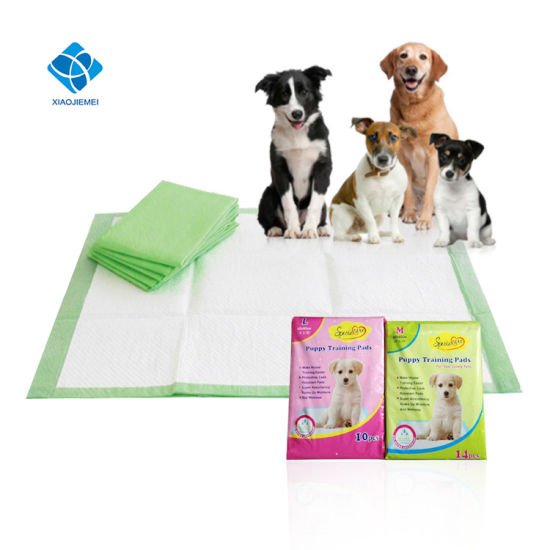 25f426846c China Factory of Disposable Super Absorbent Puppy Dog Cat Training PEE Wee  Wee Mat Pad pictures