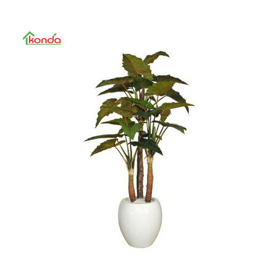 Hot Sale Plastic Decorative Tree Plant Bonsai Artificial Cordyline Fruticosa