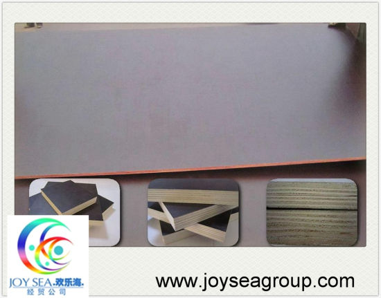 Cheap Film Faced Plywood Made in China pictures & photos