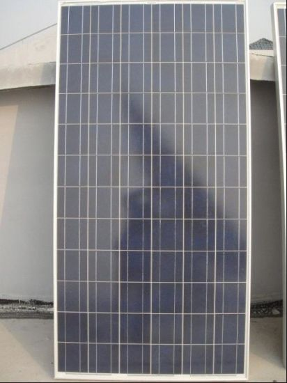 150W Poly Solar Panel Cheaper Price! China Factory Direct Sale!