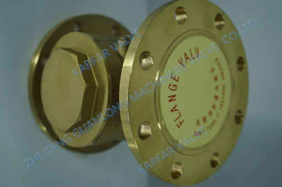 Brass API Non Return Swing Check Valve (H44) pictures & photos
