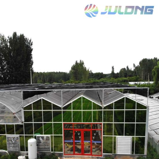 China Suppliers Recirculation Aquaculture Systems Agriculture Greenhouse for Fish Farm