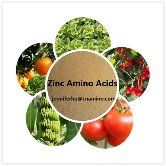 China Organic Zinc Amino Acid Chelate Organic Fertilizer - China