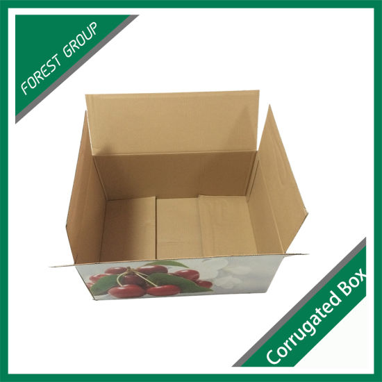 2017 Fancy New Design Red Fruit Cardboard Box Ep484545 pictures & photos