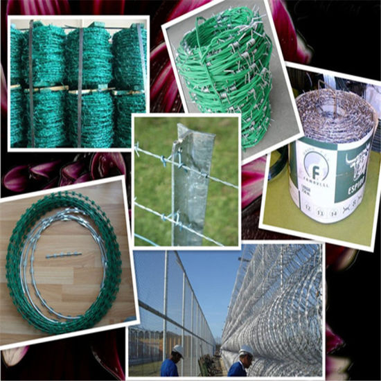 Galvanized Double Twisted Barbed Iron Wire (MT-BW004) pictures & photos