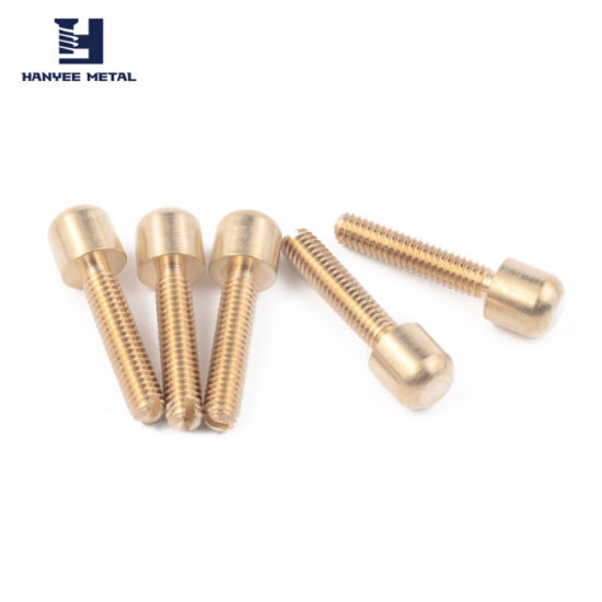 SGS Proved Products Furniture Hardware Fittings Brass Customized Bolt