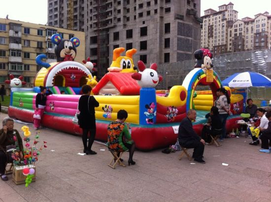 Inflatable Castle for Children and Adult