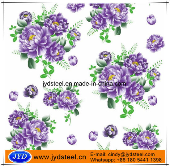 Decorative Materials Flower Coating PPGL Steel Coils pictures & photos