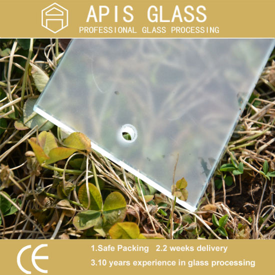 Colored Printing Glass/ Acid Etched Tempered Glass / Frosted Glass / Opaque Glass / Translucent Glass pictures & photos