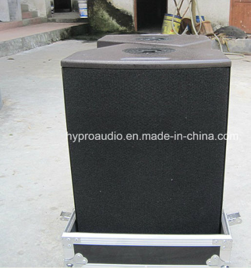 12xt PRO Sound System, Coaxial Stage Monitor pictures & photos