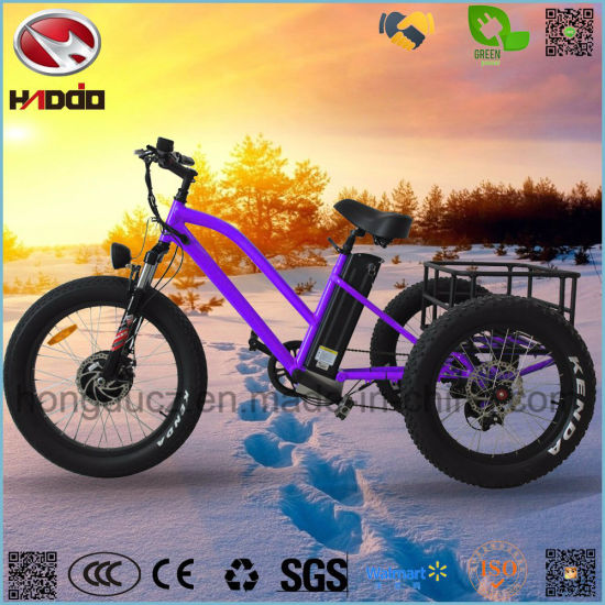 48V 500W Fat Tire Cargo Electric Tricycle with LCD Display pictures & photos