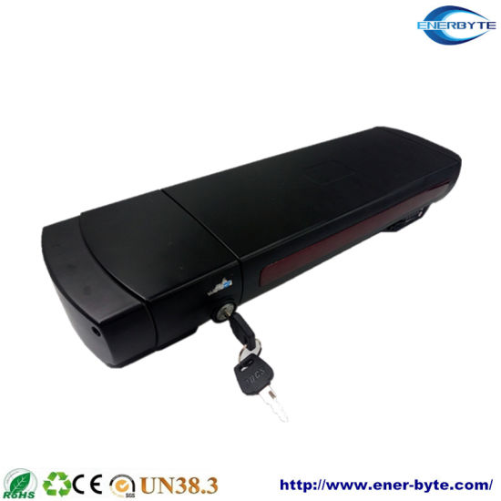 48V 6ah Lithium/Li-ion/LiFePO4 E-Bike Battery/Rechargeable Battery/Li-ion Battery Pack