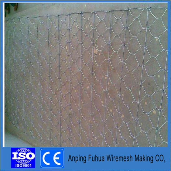 Hexagonal Wire Mesh for Fencing Chicken