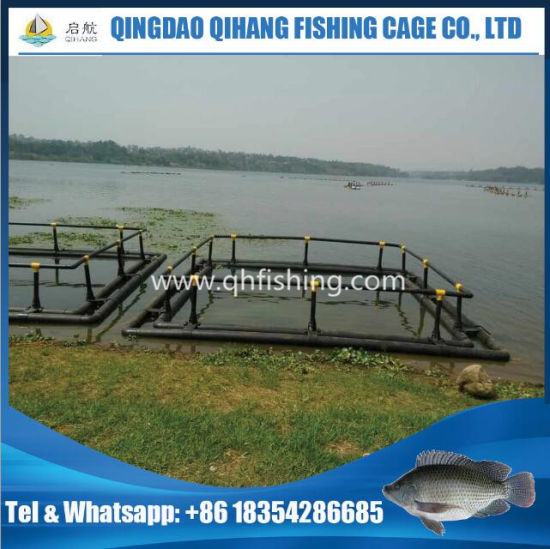 China Fish Farming Cage with HDPE Frame, Fishing Net - China Fish