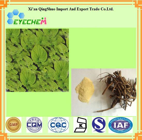 Factory Supply Natura Free Sample Kava Extract Powder 30% 40% 70% Kavalactone