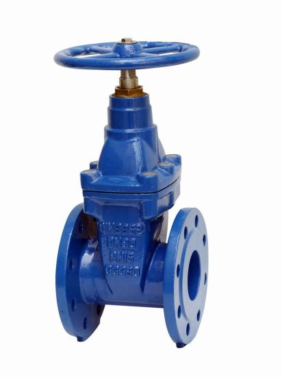 Resilient Seated Gate Valve En1074 F4 F4 BS5163 Awwac515 Awwac509 SABS664 SABS665 Pn16 250psi Flanged or Socket Gate Valve