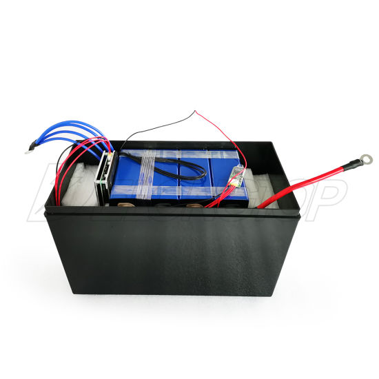 LiFePO4 Deep Cycle Battery 12V 100ah with Built-in BMS for Backup Power and off Grid