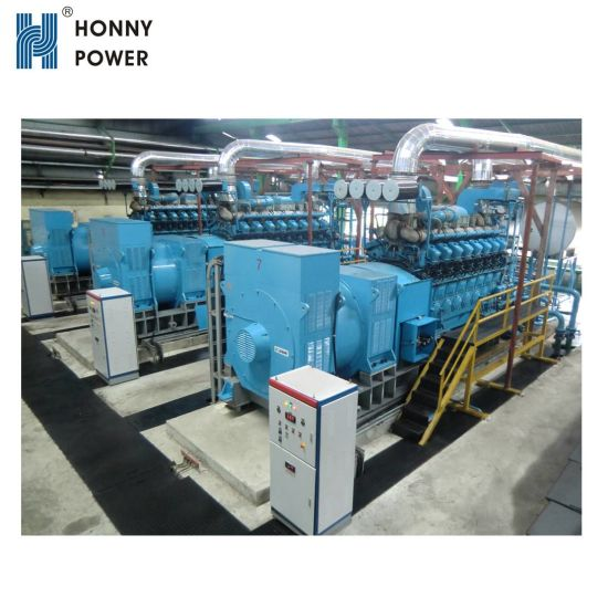 China Honny Power 1MW to 50MW Biogas Power Station - China Biogas