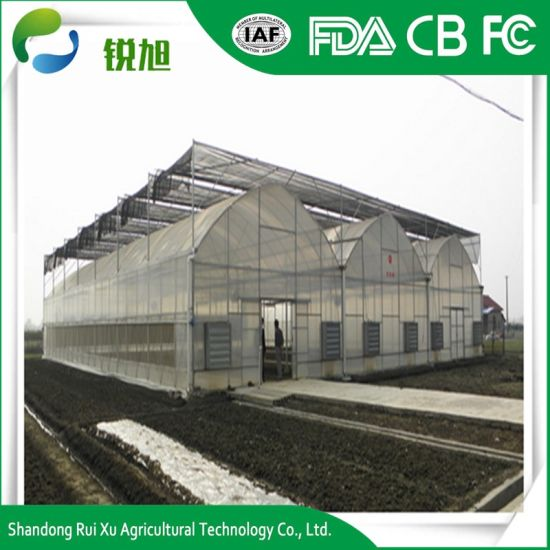 Plastic Film Covering Tunnel Tomato Cheap Agricultural Greenhouse pictures & photos