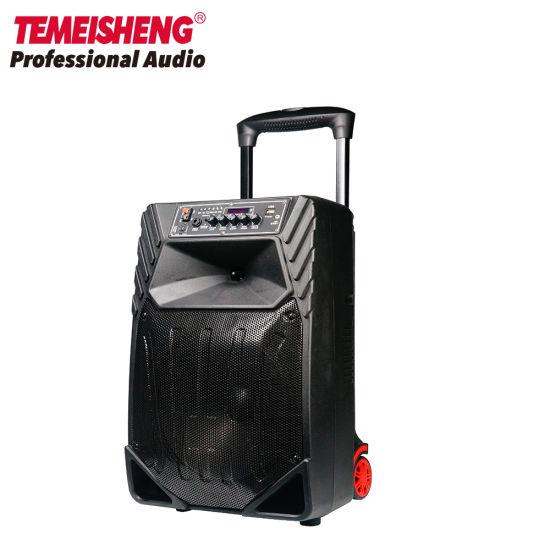 Temeisheng 12 Inch Karaoke Portable Bluetooth Trolley Speaker