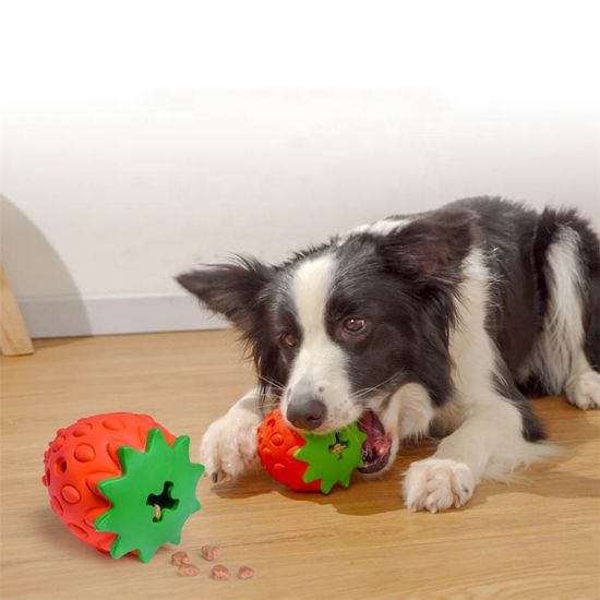 New Arrival Pet Toys Fruit Strawberry and Pitaya Chew Feeder Dog Toys