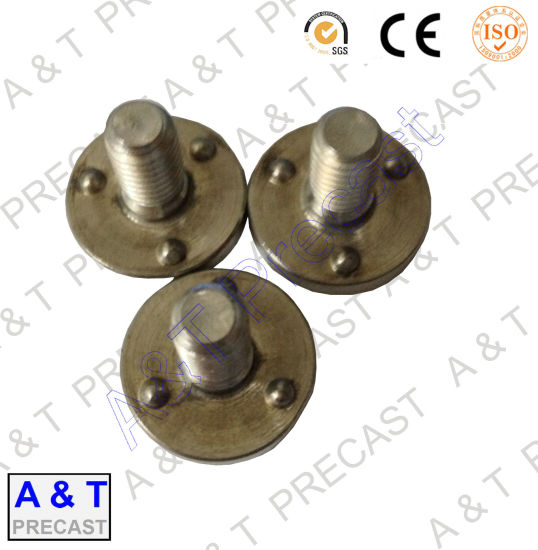 OEM ODM /Stainless Steel/ Square Head T Bolt with High Quality pictures & photos