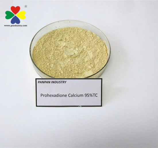 Agrochemical New Pgr Prohexadione Calcium 95tc Supplier