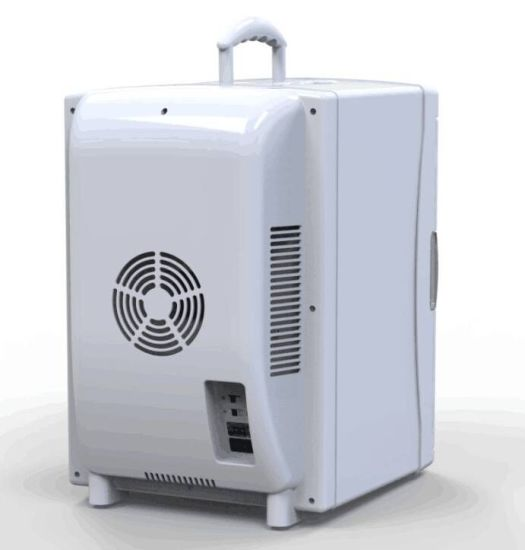 Fashionable Mini Cooler 25liter DC12V, AC100-240V with Cooling and Warming Function pictures & photos