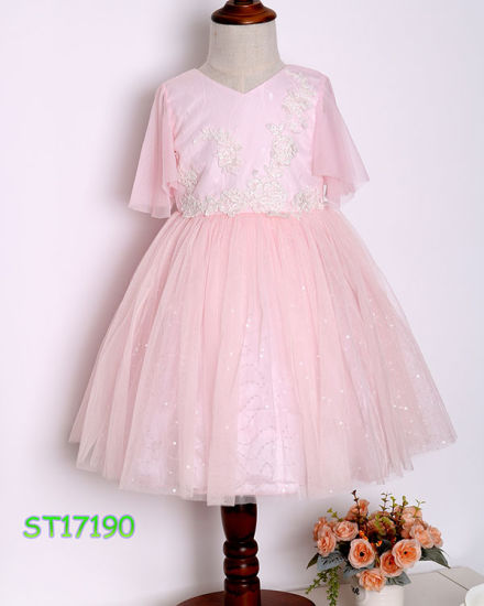 Latest Pink Tulle Embroidery Smocked Princess Dress