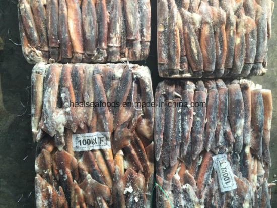 Best Frozen Squid From Chinese Factory pictures & photos